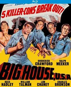 Big House, U.S.A. (1955)