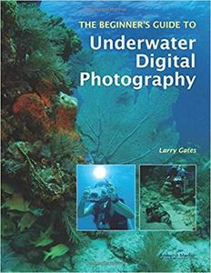 The Beginner's Guide to Underwater Digital Photography [Repost]