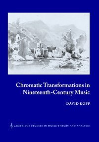 Chromatic Transformations in Nineteenth-Century Music (Cambridge Studies in Music Theory and Analysis)