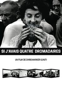If I Had Four Camels / Si j'avais quatre dromadaires (1966)