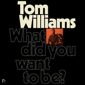Tom Williams - What Did You Want to Be? (2019)