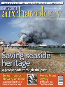Current Archaeology - Issue 295
