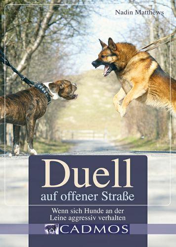 Duell auf offener Straße: Wenn sich Hunde an der Leine aggressiv verhalten