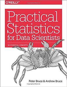 Practical Statistics for Data Scientists: 50 Essential Concepts  (full version)