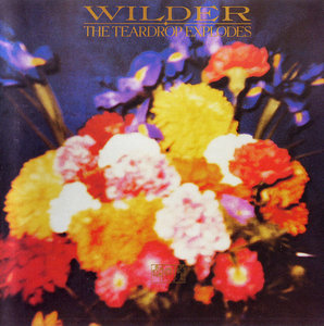 The Teardrop Explodes - Wilder (1981) HDCD Expanded Remastered 2000