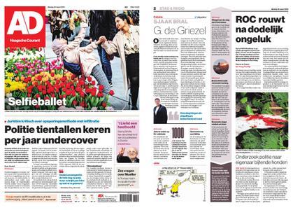Algemeen Dagblad - Delft – 26 maart 2019