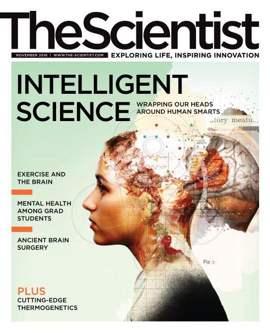 The Scientist - November 2018