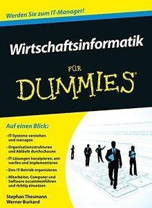 Wirtschaftsinformatik für Dummies (repost)