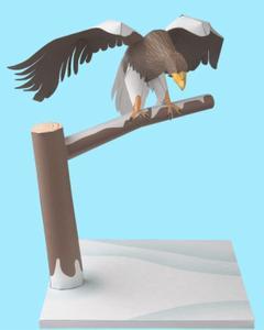 Steller's Sea Eagle, Paper Craft Model