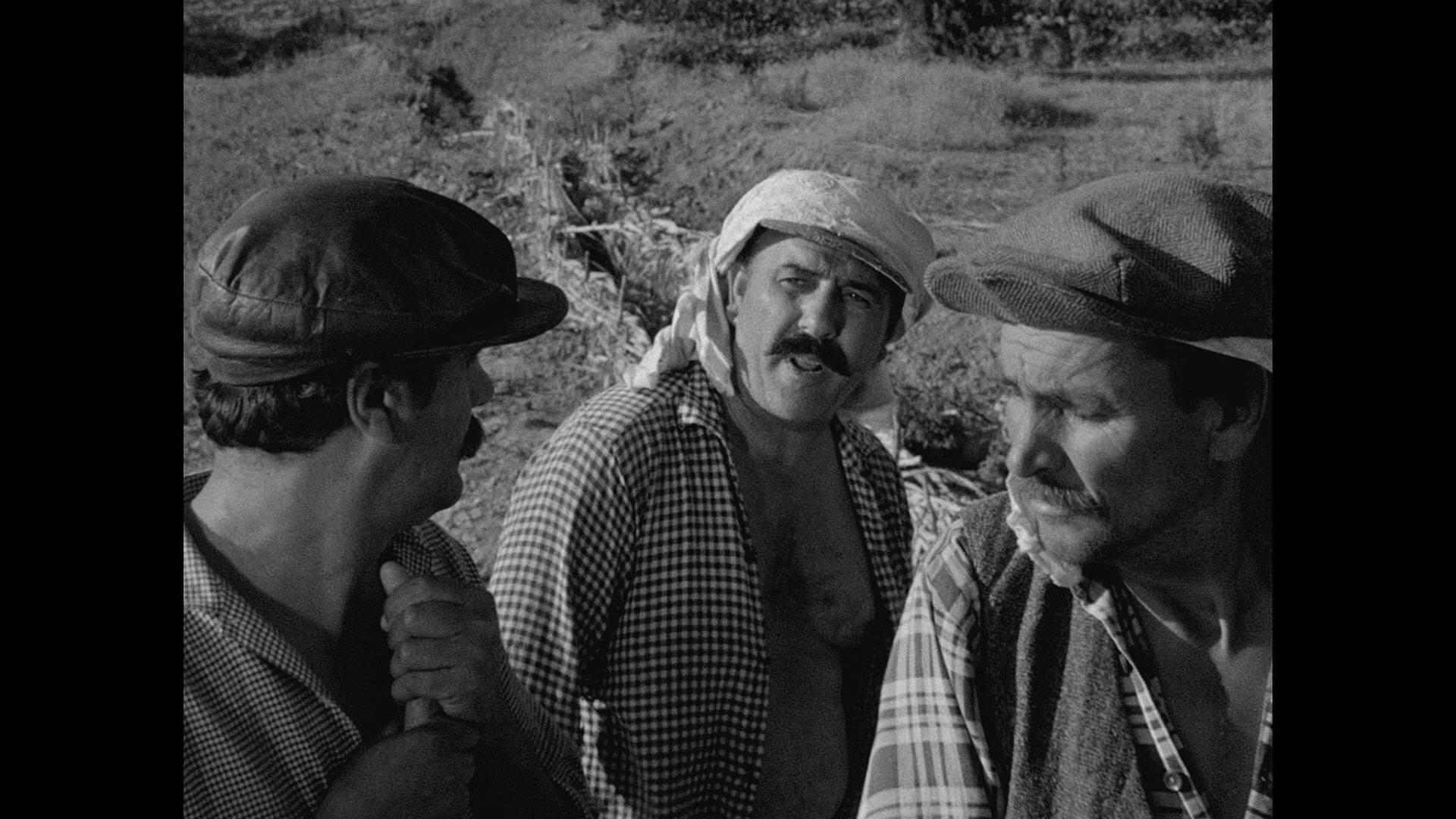 Засушливое лето / Susuz Yaz / Dry Summer (1963)