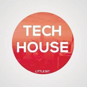 Little Bit Tech House 2 WAV