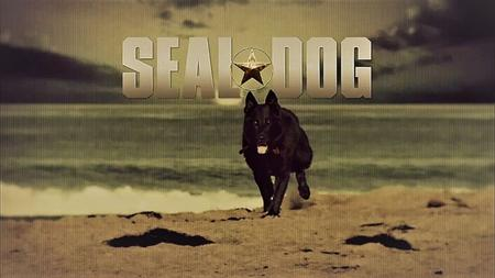 Smithsonian Ch. - SEAL Dog (2014)