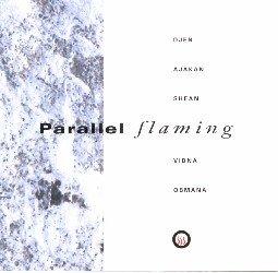 Djen Ajakan Shean & Vidna Obmana - Parallel Flaming (1993)