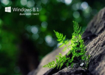 Windows 8.1 build 9600.19401