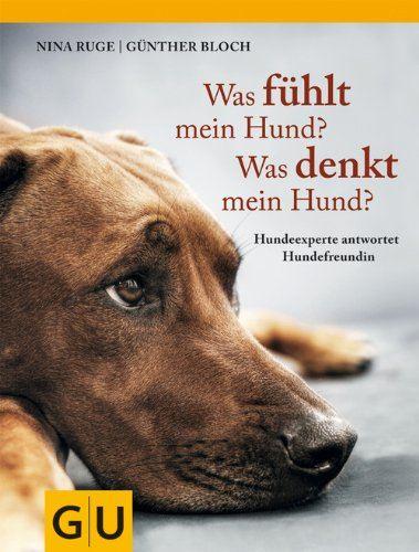 Was fühlt mein Hund? Was denkt mein Hund?: Hundeexperte antwortet Hundefreundin