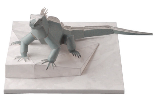 Marine Iguana, Paper Craft Model
