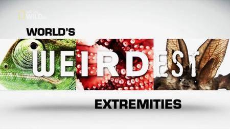 National Geographic - World's Weirdest Extremities (2014)