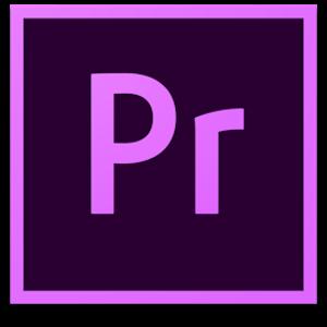 Adobe Premiere Pro CC 2019 v13.1.1