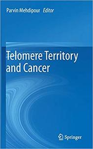 Telomere Territory and Cancer