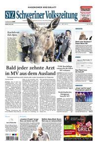 Schweriner Volkszeitung Hagenower Kreisblatt - 23. Februar 2019
