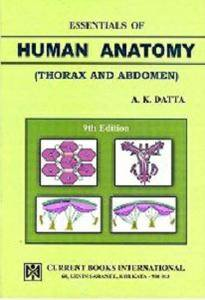 Essentials of Human Anatomy, Vol.1: Thorax and Abdomen