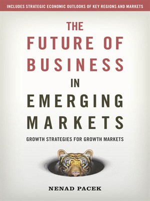 The Future of Business in Emerging Markets (repost)