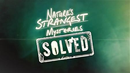 LLC - Natures Strangest Mysteries Solved Series 1 Part 12: Snowboarding Crow (2019)