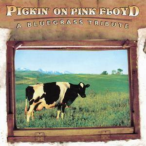 V.A. - Pickin' On Pink Floyd: A Bluegrass Tribute (2001)