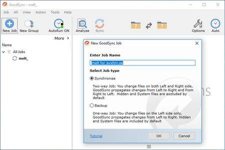 GoodSync Enterprise 10.11.8.1 Multilingual