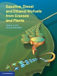 Gasoline, Diesel and Ethanol Biofuels from Grasses and Plants (repost)