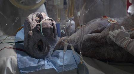 E.T. the Extra-Terrestrial (1982) [Repost]