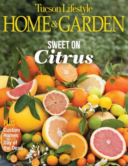 Tucson Lifestyle Home & Garden - November 2016