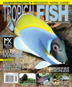 Tropical Fish Hobbyist Magazine May 2011