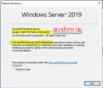 Windows Server 2019 DataCenter ESD 1809 Build 17763 503 May