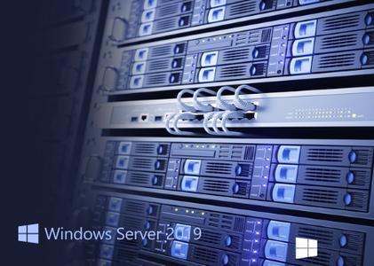 Microsoft Windows Server 2019 Features on Demand