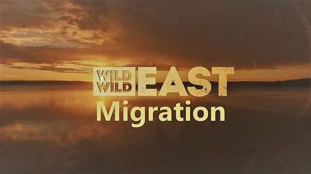 Smithsonian Earth - Wild Wild East Series 1: Migration (2017)