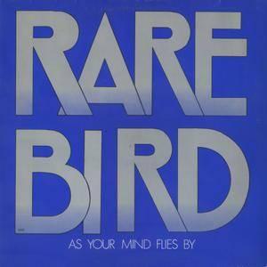 Rare Bird - As Your Mind Flies By (1970) DE Pressing - LP/FLAC In 24bit/96kHz