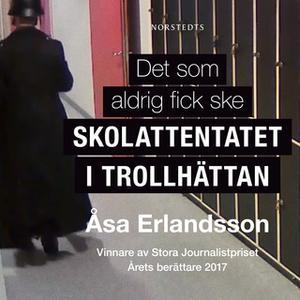 «Det som aldrig fick ske» by Åsa Erlandsson