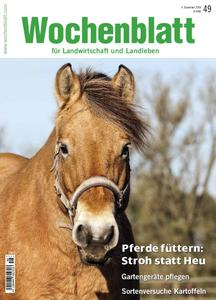 Wochenblatt - 04 Dezember 2018