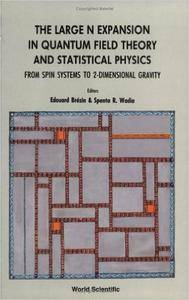 The Large N Expansion in Quantum Field Theory and Statistical Physics: From Spin Systems to 2-Dimensional Gravity (Repost)