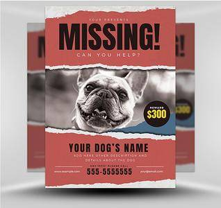 Lost Dog Flyer 5