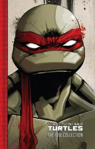 Teenage Mutant Ninja Turtles - The IDW Collection v01 (2015) (Digital) (danke-Empire