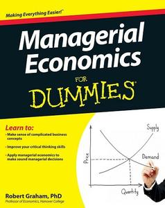 Managerial Economics For Dummies (repost)