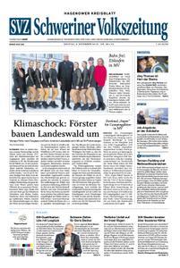 Schweriner Volkszeitung Hagenower Kreisblatt - 03. Dezember 2018