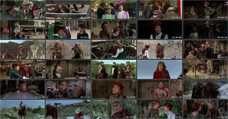 The Rare Breed (1966)