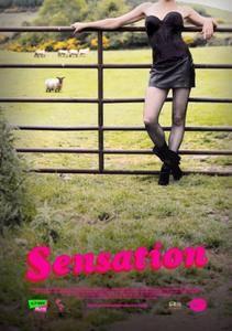 Sensation (2011)