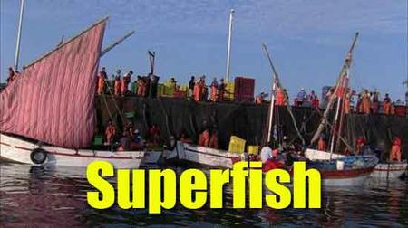 Superfish (2008)
