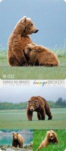 ImageBroker | IB-032 | Varios HQ Images