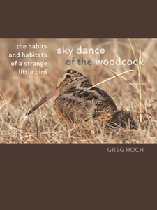 Sky Dance of the Woodcock : The Habits and Habitats of a Strange Little Bird