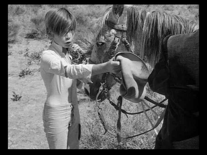 White Mane / Crin blanc: Le cheval sauvage (1953) [The Criterion Collection] [Re-UP]